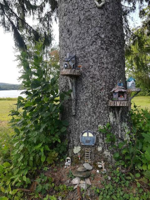 hanging with gnomes