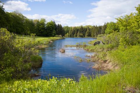 Whitingham Vermont